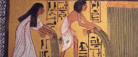 Egypt agriculture - Sennedjem and Ti harvesting papyrus (reduced, cropped)